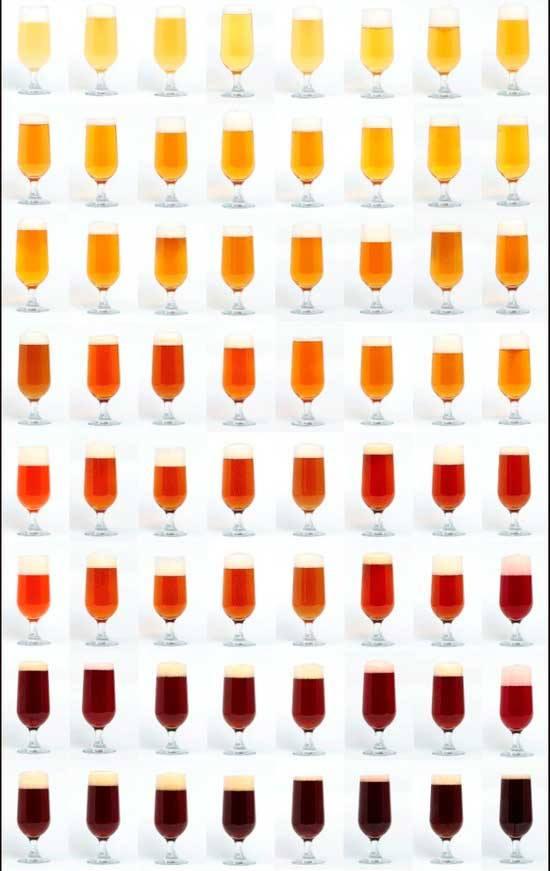 Onab materiale didattico - Scale di colore ...